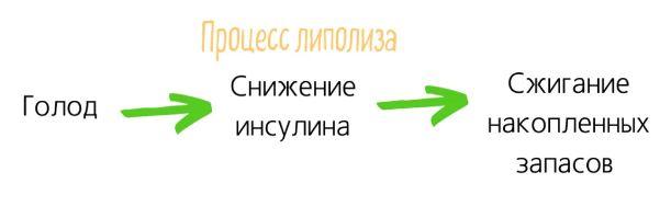 липолиз