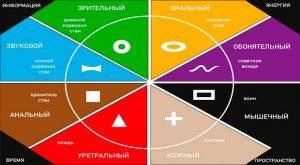 системно-векторная психология